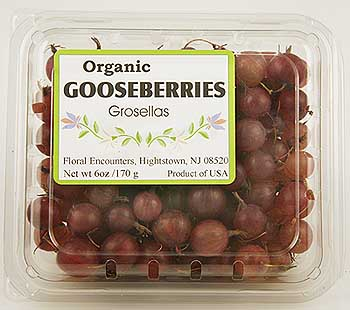 fresh red gooseberries