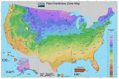 Plant Hardiness map of the United States.