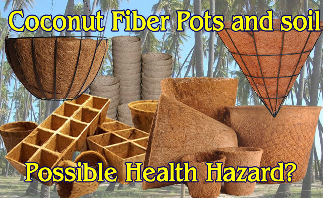 Coconut Fiber For Your Plants.  Good Or Possible Hazard?