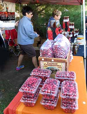 Fresh cranberries for sale