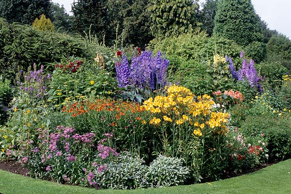 Winter is the best time to plan your summer garden.