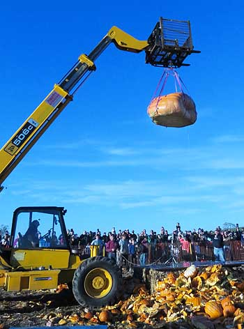 hoisting giant pumpkin up to get dropped.