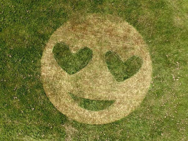How about a giant smiley face to brighten your neighbourhood.