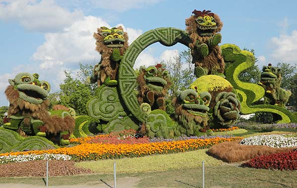 Large group of Chinese lions is massive mosaiculture display from Shanghai