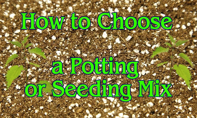HOW TO CHOOSE A POTTING OR SEEDING MIX