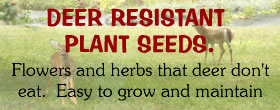 Seeds for deer resistant plants for sale